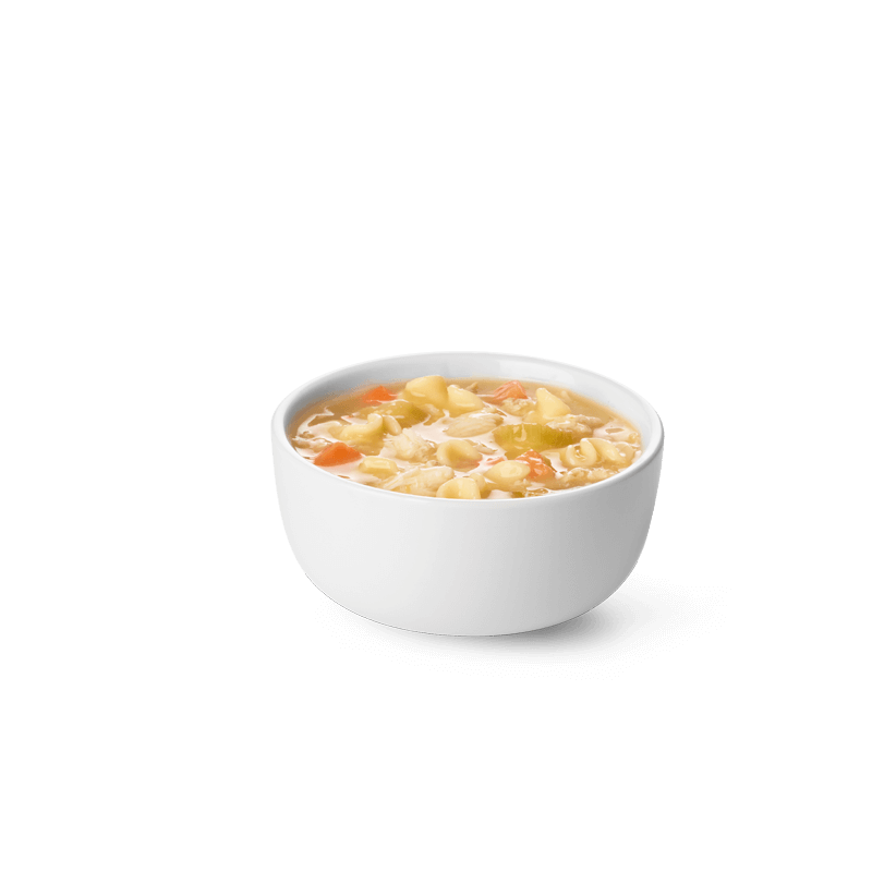 Small Chicken Noodle Soup